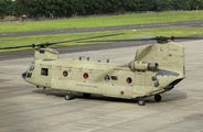 12-08113 - USA - Army Boeing CH-47C Chinook aircraft