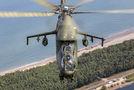 #4 Poland - Army Mil Mi-24D 461 taken by Michal Adamowski