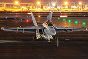 169214 - USA - Navy Boeing EA-18G Growler aircraft