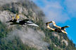 #4 Switzerland - Air Force McDonnell Douglas F/A-18C Hornet J-5011 taken by Martin Thoeni - Powerplanes