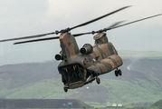 52917 - Japan - Ground Self Defense Force Kawasaki CH-47J Chinook aircraft