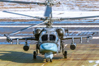 - - Russia - Air Force Kamov Ka-52 Alligator