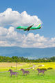 JA04FJ - - Airport Overview - Airport Overview - Photography Location aircraft