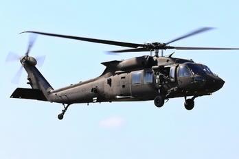 161238 - Sweden - Air Force Sikorsky UH-60M Black Hawk