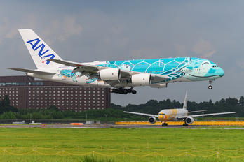 JA382A - ANA - All Nippon Airways Airbus A380