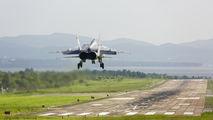 RF-33804 - Russia - Navy Mikoyan-Gurevich MiG-31 (all models) aircraft