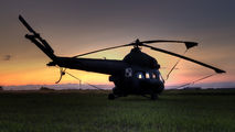 7333 - Poland - Army Mil Mi-2 aircraft