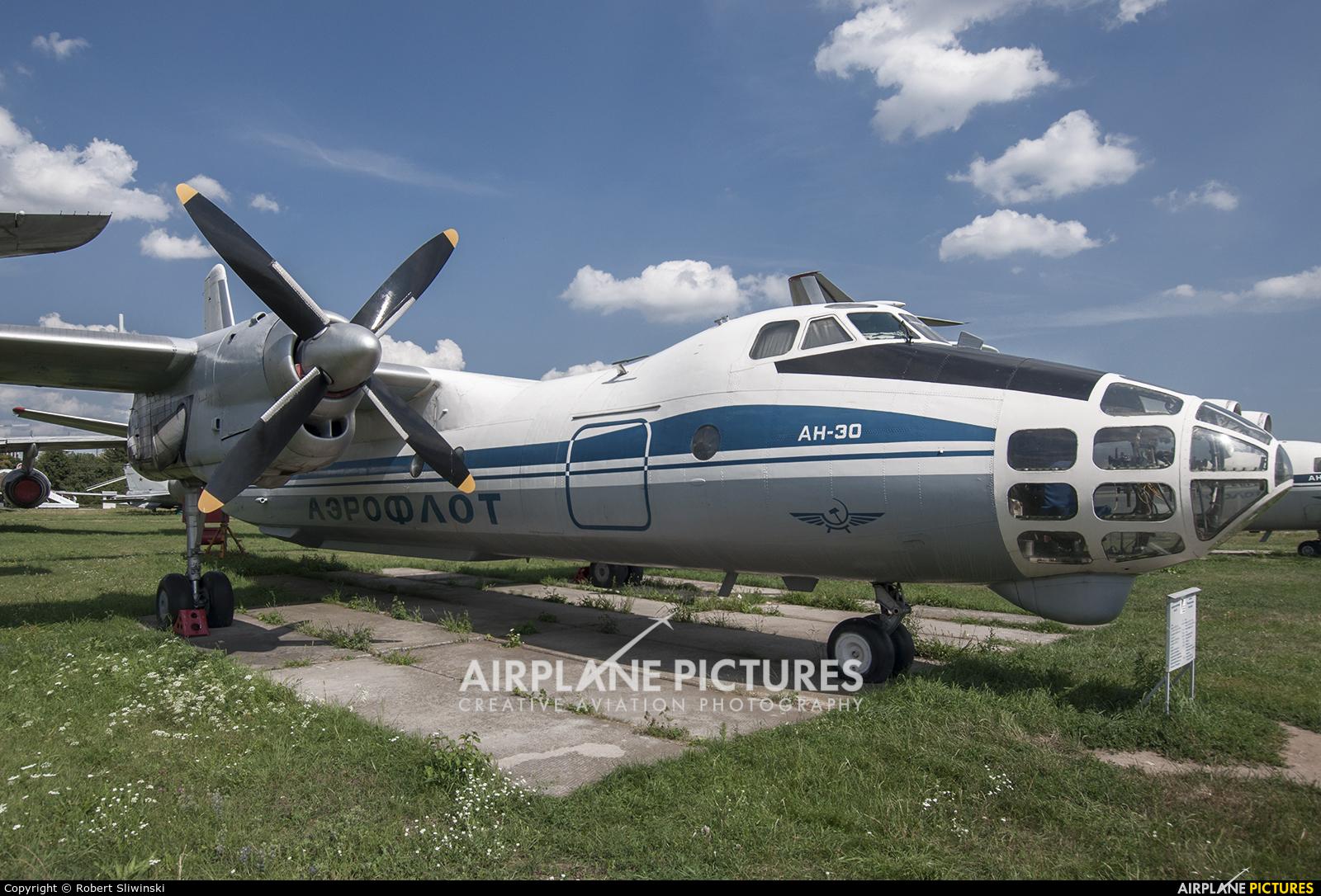 Aeroflot CCCP-30005 aircraft at Kyiv - Zhulyany