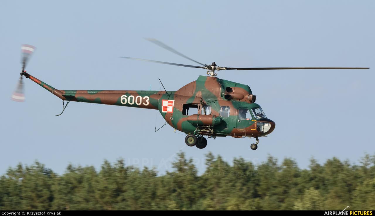 Poland - Army 6003 aircraft at Mirosławiec