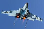 Ukraine - Air Force 69 image
