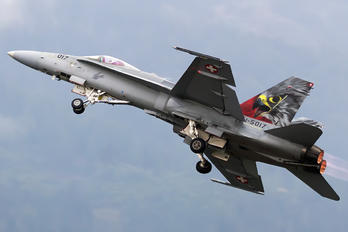 J-5017 - Switzerland - Air Force McDonnell Douglas F-18C Hornet
