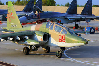 RF-91982 - Russia - Air Force Sukhoi Su-25UB