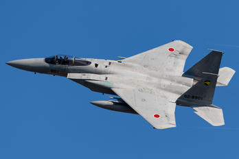 82-8901 - Japan - Air Self Defence Force Mitsubishi F-15J