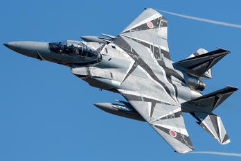 82-8093 - Japan - Air Self Defence Force Mitsubishi F-15DJ