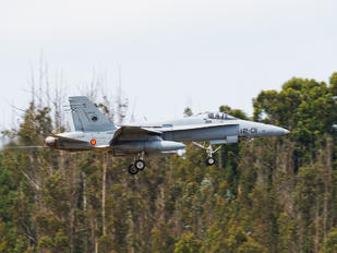C.15-13 - Spain - Air Force McDonnell Douglas EF-18A Hornet