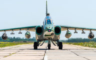 41 - Russia - Air Force Sukhoi Su-25UB aircraft