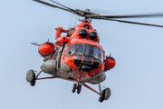 H-94 - Argentina - Air Force Mil Mi-171E aircraft