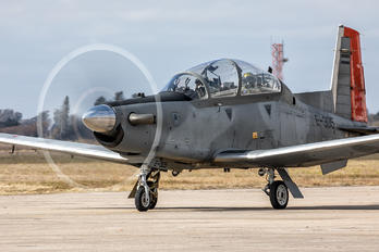 E-305 - Argentina - Air Force Beechcraft T-6 Texan II