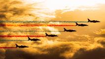 """France - Air Force """"Patrouille de France"""" E44 image"""
