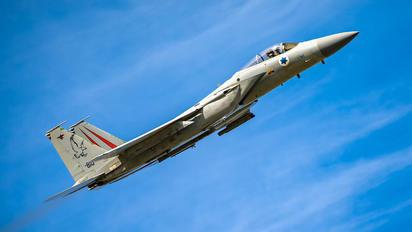 810 - Israel - Defence Force McDonnell Douglas F-15C Eagle