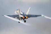 HN-431 - Finland - Air Force McDonnell Douglas F-18C Hornet aircraft