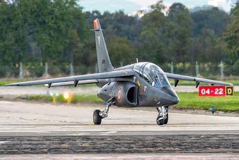 """E166 - France - Air Force """"Patrouille de France"""" Dassault - Dornier Alpha Jet E"""