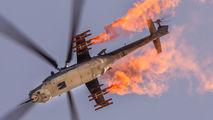 3367 - Czech - Air Force Mil Mi-35 aircraft