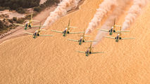 Saudi Arabia - Air Force: Saudi Hawks 8820 image