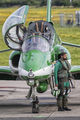 Saudi Arabia - Air Force: Saudi Hawks 071 image