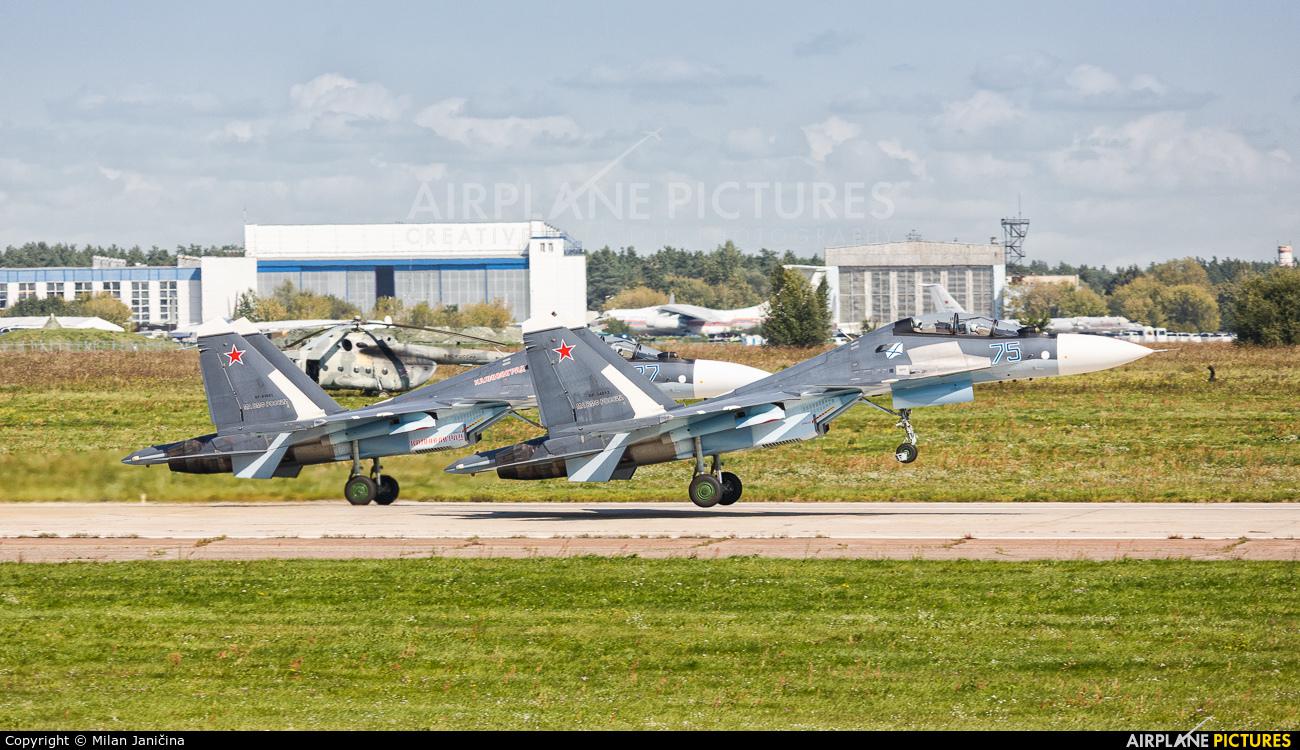 Russia - Navy - aircraft at Ramenskoye - Zhukovsky