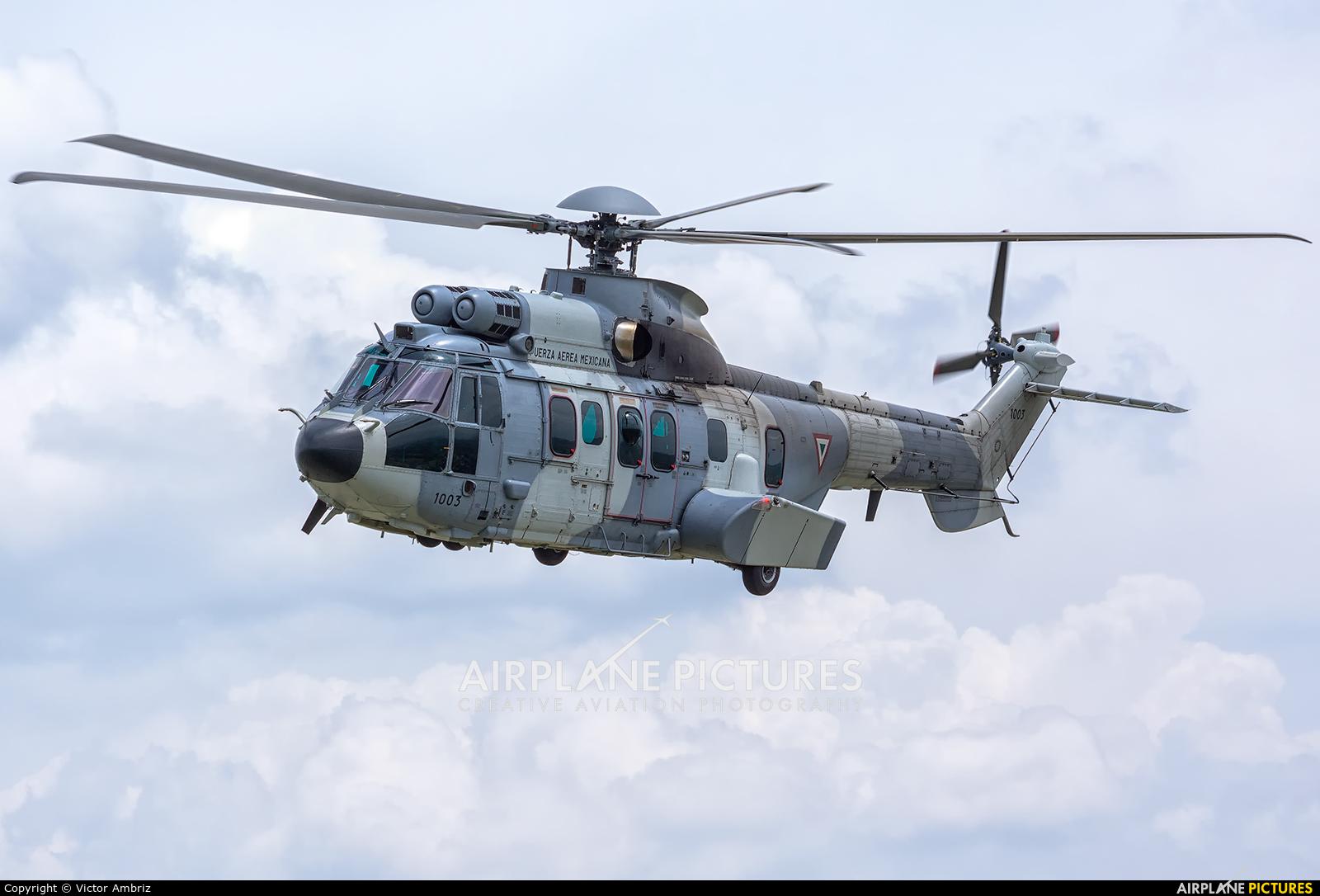 Mexico - Air Force 1003 aircraft at In Flight - Mexico