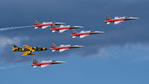 J-3091 - Switzerland - Air Force:  Patrouille de Suisse Northrop F-5E Tiger II aircraft
