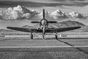 N19SF - Private Hawker Sea Fury FB.11 aircraft