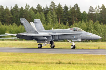 NH-406 - Finland - Air Force McDonnell Douglas F-18C Hornet
