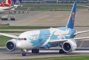 B-2733 - China Southern Airlines Boeing 787-8 Dreamliner aircraft