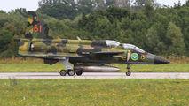 Swedish Air Force Historic Flight SE-DXO image