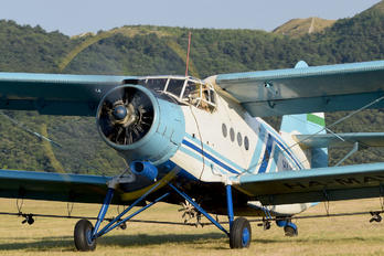 #1 Private Antonov An-2 HA-MEJ taken by fallto