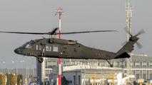 1303 - Poland - Air Force Sikorsky S-70I Blackhawk aircraft