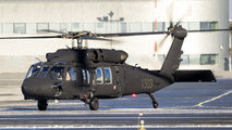 1303 - Poland - Air Force Sikorsky S-70I Blackhawk aircraft