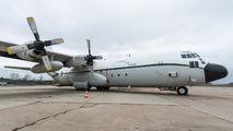 7T-WHN - Algeria - Air Force Lockheed C-130H Hercules aircraft