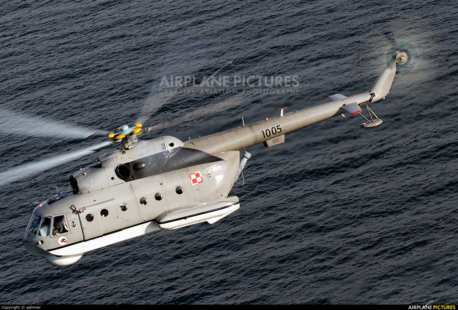 Poland - Navy 1005 aircraft at In Flight - Poland