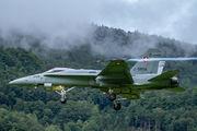 Switzerland - Air Force J-5006 image
