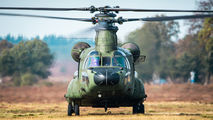 D-101 - Netherlands - Air Force Boeing CH-47D Chinook aircraft