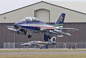 "Italy - Air Force ""Frecce Tricolori"" MM54500 image"