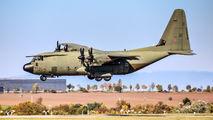Royal Air Force ZH889 image