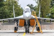 Poland - Air Force 42 image