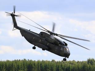 84+90 - Germany - Army Sikorsky CH-53G Sea Stallion