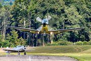 C-407 - Switzerland - Air Force Pilatus PC-9 aircraft