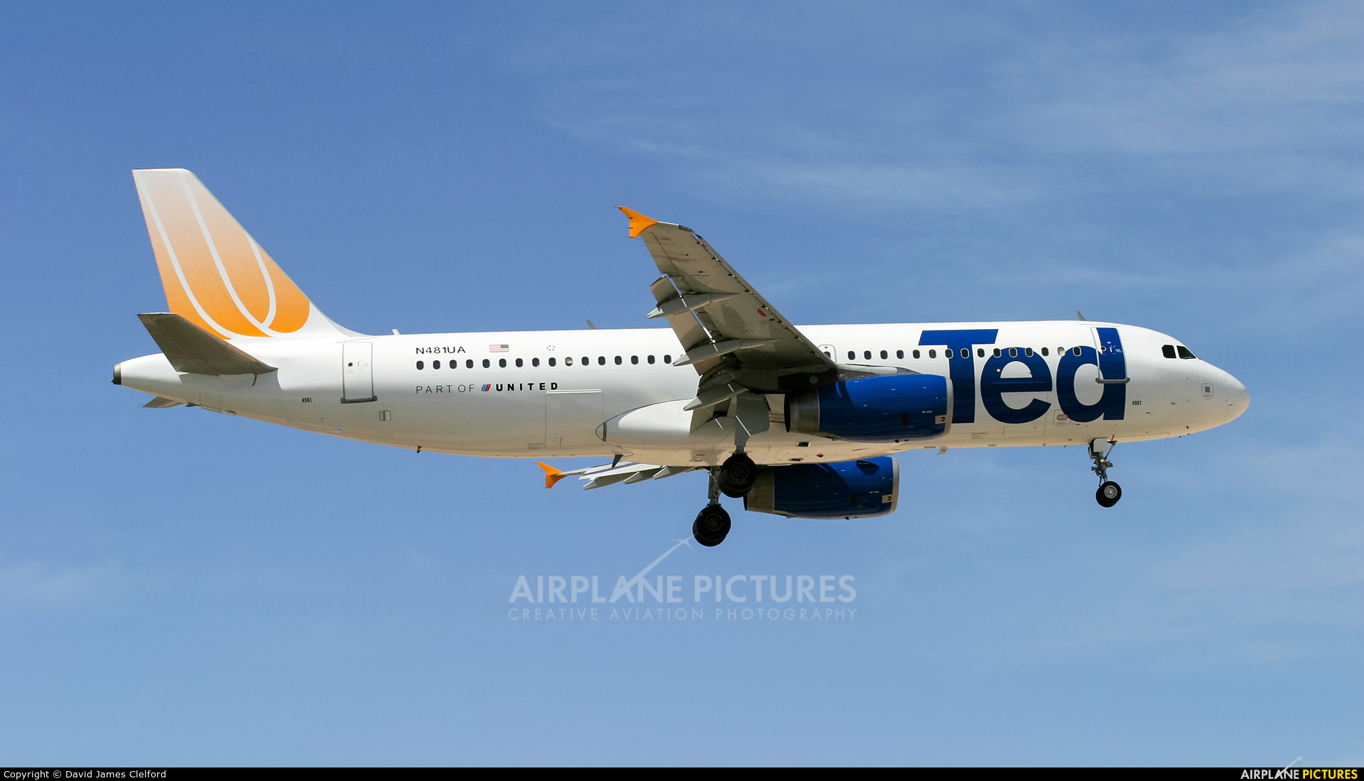 Ted N481UA aircraft at Las Vegas - McCarran Intl
