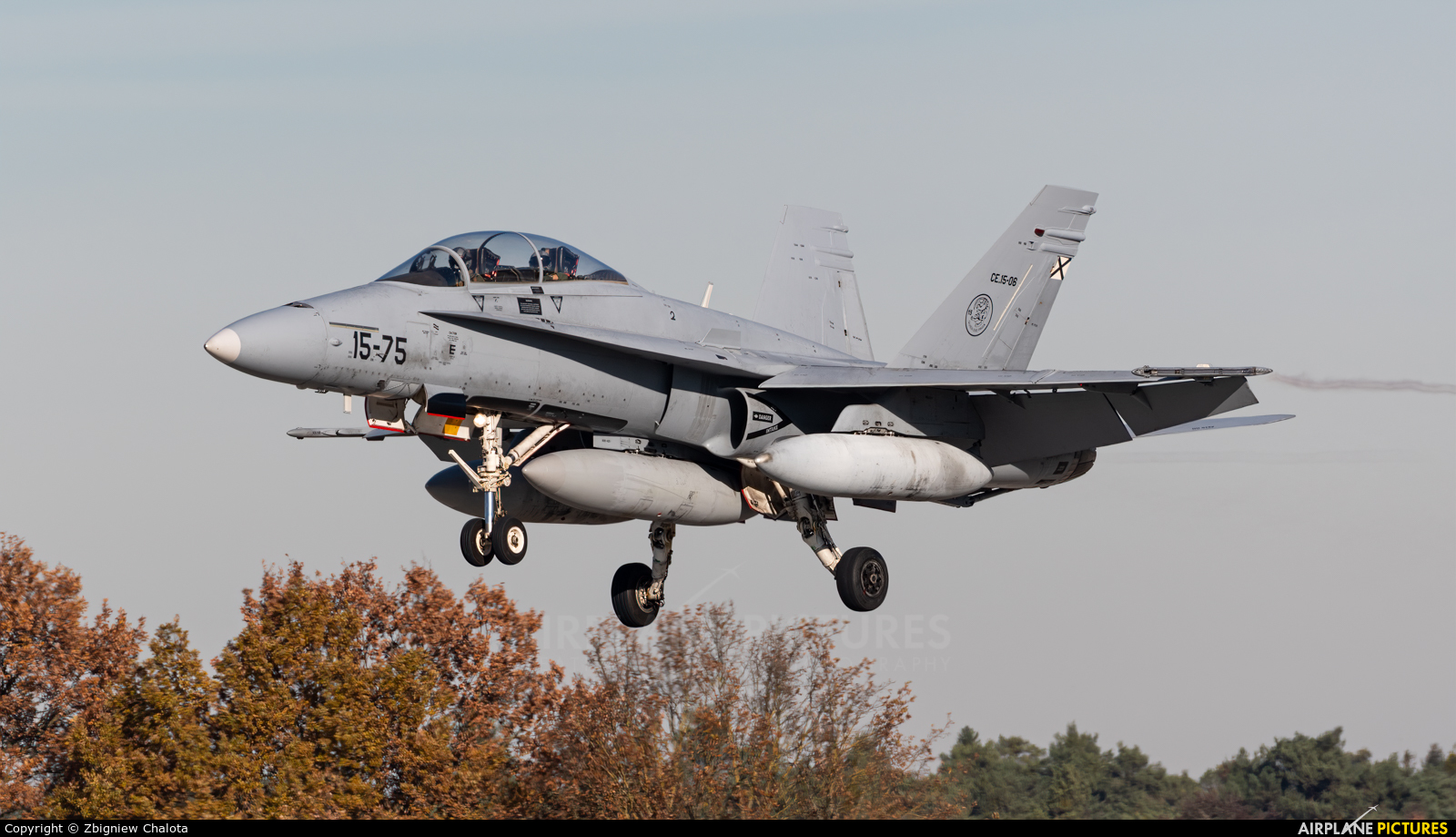 Spain - Air Force 15-75 aircraft at Ingolstadt - Manching